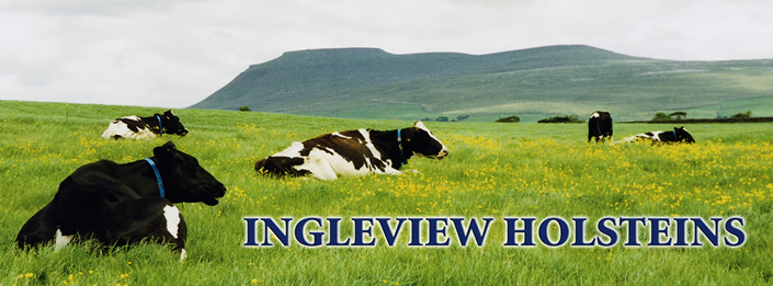 ingleview banner